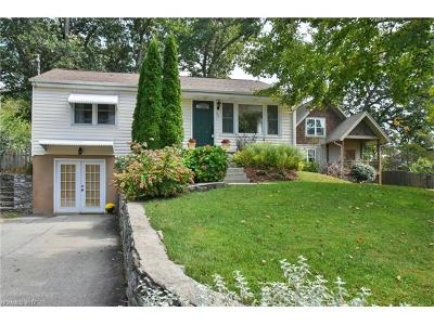 Asheville Single Family Home For Sale: 64 Rumbough Place