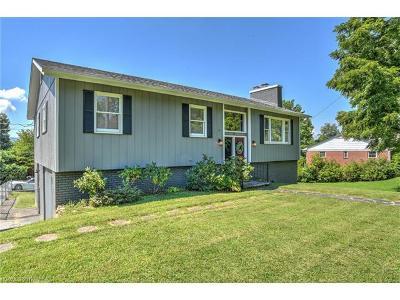 Weaverville Single Family Home For Sale: 9 Hamburg Mountain Road