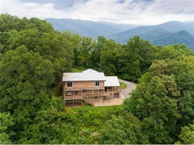 Weaverville Single Family Home Under Contract-Show: 220 Pink Fox Cove Road