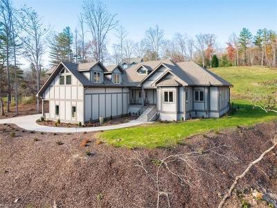 Asheville Single Family Home For Sale: 22 Keswick Drive