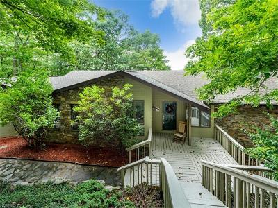 Mills River Single Family Home For Sale: 46 Honey Locust Drive