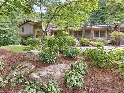 Asheville Single Family Home For Sale: 45 Stratford Road