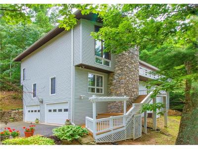 Asheville Single Family Home For Sale: 209 Bent Tree Road