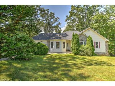 Arden Single Family Home For Sale: 63 Ball Gap Road