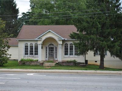 Hendersonville Single Family Home For Sale: 2030 Asheville Highway #6 & 7