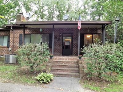 Hendersonville Single Family Home For Sale: 200 Azalea Woods