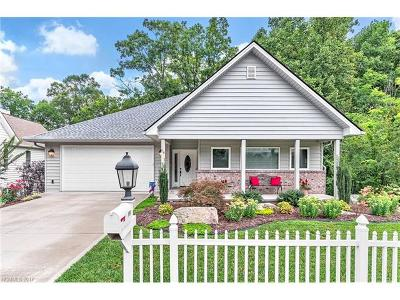 Hendersonville Single Family Home For Sale: 114 Carriage Summitt Way