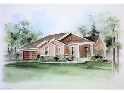 Asheville Single Family Home For Sale: Lot 43 Verde Drive #43