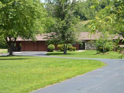 Mills River Single Family Home For Sale: 5 Mallard Circle