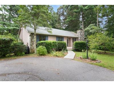 Asheville Single Family Home For Sale: 35 Spring Hill Drive