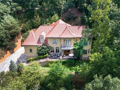 Asheville Single Family Home For Sale: 598 Old Toll Road #170