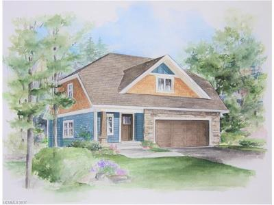 Asheville Single Family Home For Sale: Lot 29 Verde Drive #29