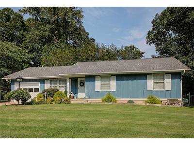 Hendersonville Single Family Home For Sale: 25 Springside Drive
