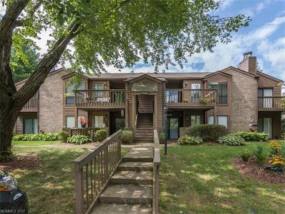 Asheville Condo/Townhouse For Sale: 34 Ravencroft Lane