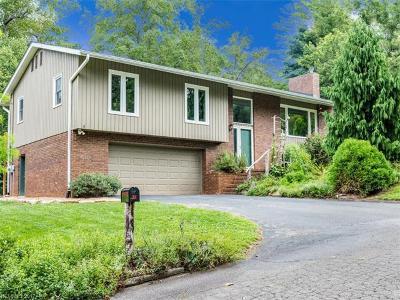 Asheville Single Family Home For Sale: 15 Beaverdam Court