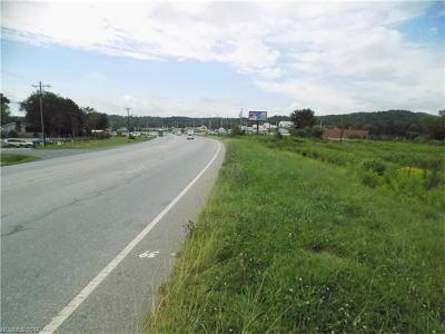 Mills River Residential Lots & Land For Sale: Hwy 280 Highway