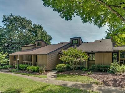 Lake Lure Condo/Townhouse For Sale: 202 West Lake Drive S #1502