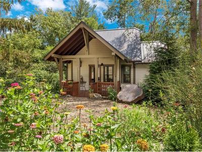 Asheville Single Family Home For Sale: 38 Sulphur Springs Road