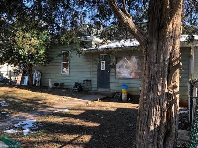 Asheville Single Family Home For Sale: 125 Burton Street