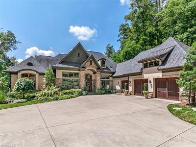 Asheville Single Family Home For Sale: 98 Camp Allis Road