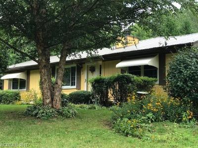 Hendersonville Single Family Home For Sale: 689 Delaware Lane