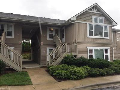 Hendersonville Condo/Townhouse For Sale: 111 Morningside Lane