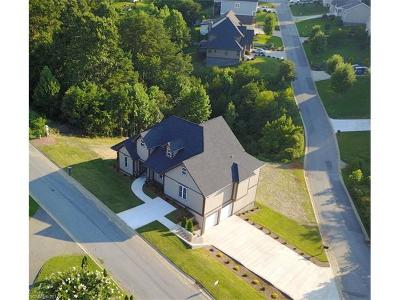 Asheville Single Family Home For Sale: 22 Silverling Drive
