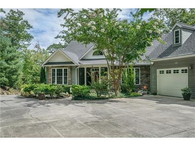 Etowah Single Family Home For Sale: 57 Masters View Drive