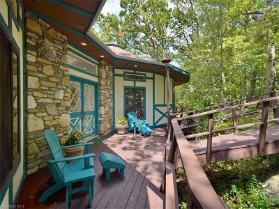 Asheville Single Family Home For Sale: 209 Cedar Mountain Road