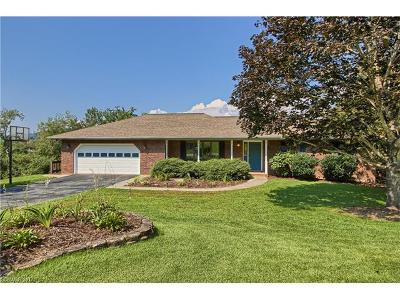 Hendersonville Single Family Home For Sale: 124 Mountain Valley Drive