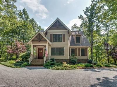 Saluda Single Family Home For Sale: 978 Rixhaven Drive