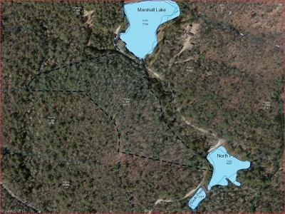 Cedar Mountain, Dunns Rock Residential Lots & Land For Sale: L-12 Marshall Lake Road