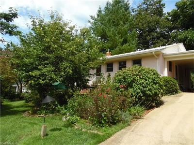 Brevard Single Family Home For Sale: 40 Hamilton Drive