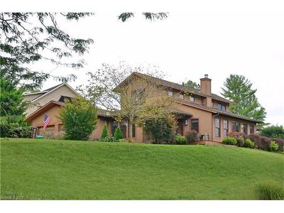 Weaverville Single Family Home For Sale: 158 Pickens Road