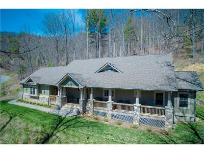 Asheville Single Family Home For Sale: 17 Starling Pass #87