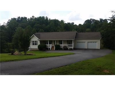 Weaverville Single Family Home For Sale: 228 Jordust Lane