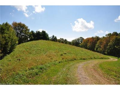 Hot Springs NC Residential Lots & Land For Sale: $88,000