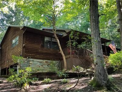 Pisgah Forest Single Family Home For Sale: 64 Pine Tree Lane