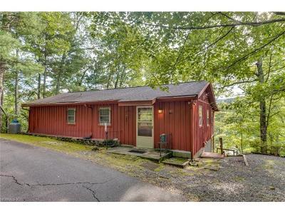 Lake Lure Single Family Home For Sale: 117 Moffitt Road