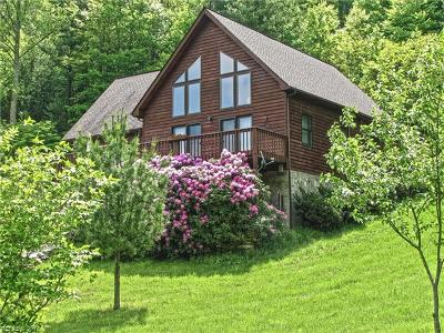 Hot Springs NC Single Family Home For Sale: $749,000