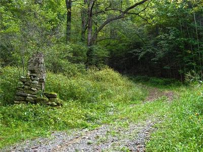 Hot Springs NC Residential Lots & Land For Sale: $299,000