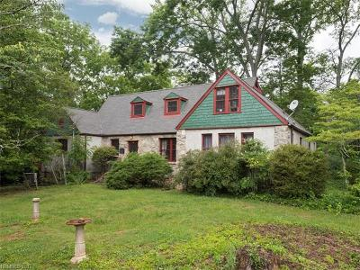 Arden Single Family Home For Sale: 66 Long Shoals Road