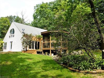 Hendersonville Single Family Home For Sale: 227 Fallen Timber Road