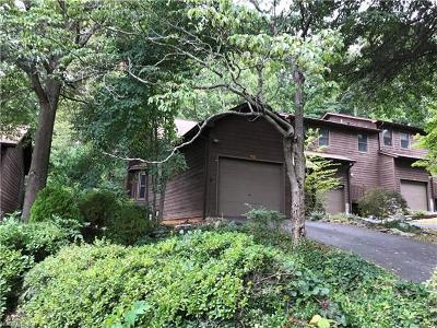 Asheville Condo/Townhouse For Sale: 101 Parkway Vista Drive
