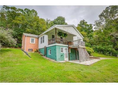 Asheville Single Family Home For Sale: 17 McKinnish Cove Road