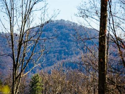 Asheville Residential Lots & Land For Sale: Lot 13 Elk Mountain Scenic Highway