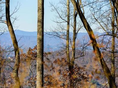 Asheville Residential Lots & Land For Sale: Lot 14 Elk Mountain Scenic Highway
