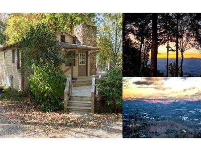 Weaverville Single Family Home For Sale: 87 Island In The Sky Trail