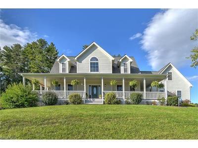Weaverville Single Family Home For Sale: 77 Al Faye Farm Way