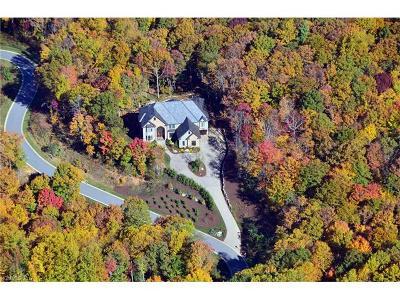 Asheville Single Family Home For Sale: 413 Barrington Drive